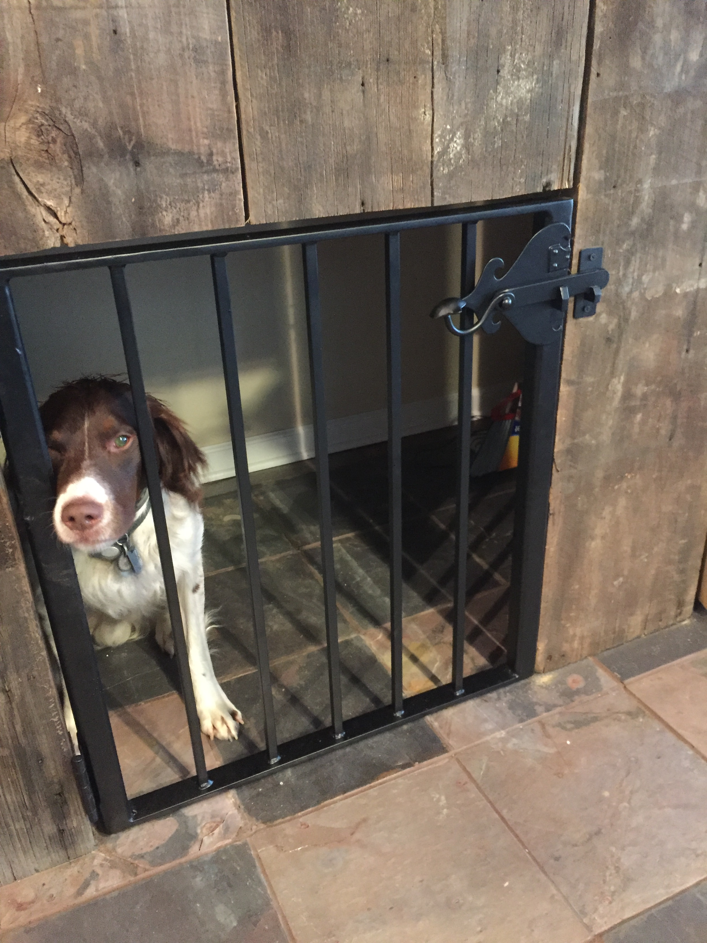 Custom Wrought Iron Dog Gate For Camp Along Alleghany River